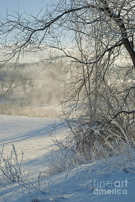 Photograph - Winter Pastorale IIi by Jessie Parker