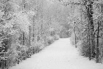 Winter Pathway Art Print