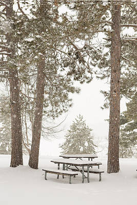 Winter Picnic By The Lake Print by Tim Grams