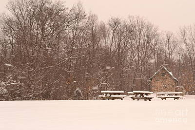 Indiana Photograph - Winter Picnic In Park by Amy Lucid