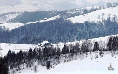 Winter Picture I Art Print by Nedelcu Valeriu