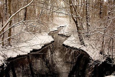 Photograph - Winter Pinelands Creek by Kristia Adams