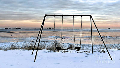Photograph - Winter Playground by Janice Drew