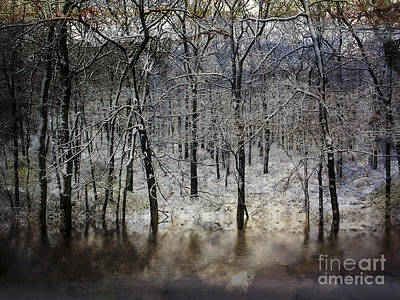 Photograph - Winter Pond by Dee Flouton