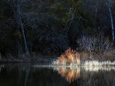 Owls - Winter Pond by Mark McKinney