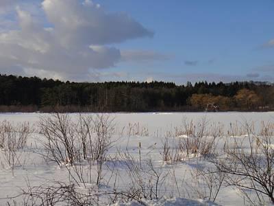 Photograph - Winter Pond by Nancy-Fay Hecker