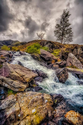 Mountain Stream Photograph - Winter Rapids by Adrian Evans