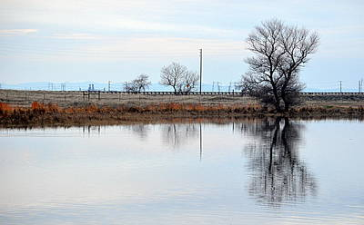 Photograph - Winter Reflection by AJ  Schibig