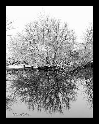 Photograph - Winter Reflections 1 by David Lester