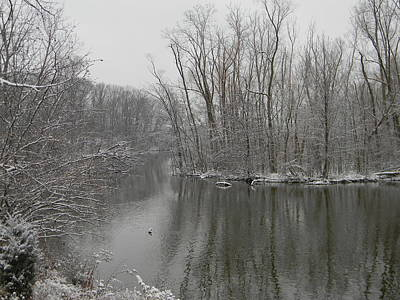 Photograph - Winter Reflections 1 by Mark Minier
