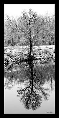 Winter Reflections 3 Art Print by David Lester