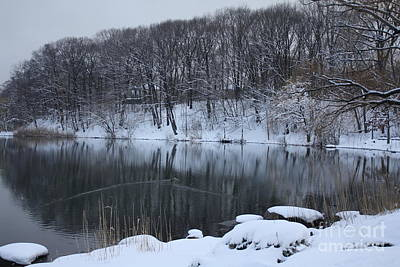 Art Print featuring the photograph Winter Reflections by Dora Sofia Caputo Photographic Art and Design