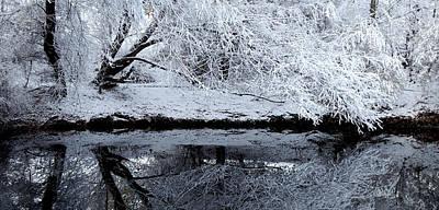 Winter Reflections Art Print by Steven Milner
