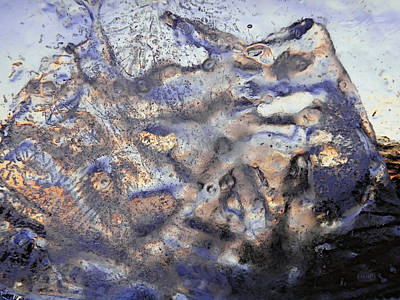 Winter Remains Art Print
