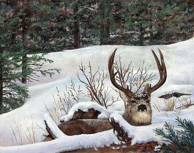 Painting - Winter Rest by Karen Cade