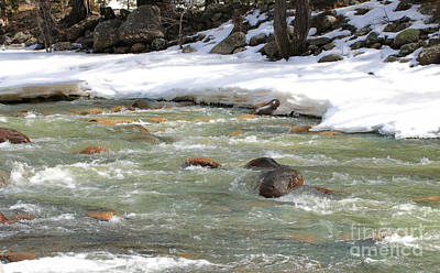 Photograph - Winter Riverbed by Mary Haber