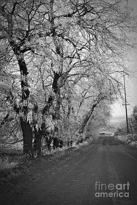 Photograph - Winter Road Bw  by Chalet Roome-Rigdon