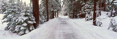 Snow Covered Photograph - Winter Road Near Lake Tahoe, California by Panoramic Images