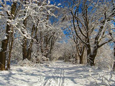 Winter Road Art Print by Raymond Salani III