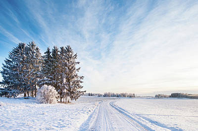 Winter Road Through Sweden Art Print by Lkpgfoto