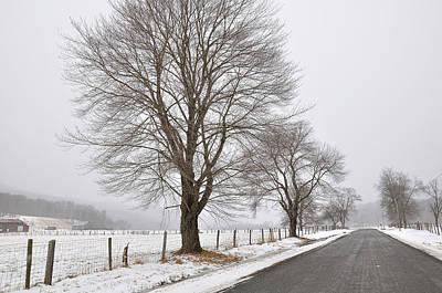 Winter Road Art Print by Todd Hostetter