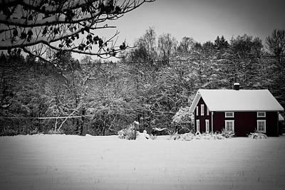 Winter Print by Robert Hellstrom