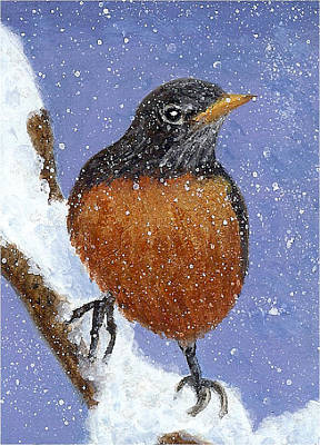Painting - Winter Robin by Fran Brooks