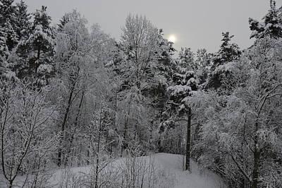 Photograph - Winter Romance 1 by Teo SITCHET-KANDA