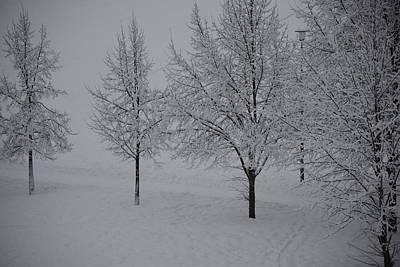 Photograph - Winter Romance 2 by Teo SITCHET-KANDA