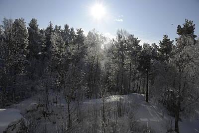 Photograph - Winter Romance 3 by Teo SITCHET-KANDA