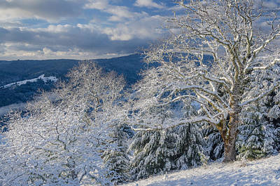 Photograph - Winter Scene At Berry Summit by Greg Nyquist