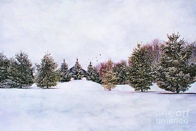 Illumination Digital Art Photograph - Winter Scene by Darren Fisher