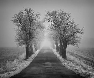 Photograph - Winter Scene by Jaromir Hron