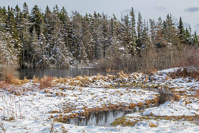 Winter Scene Maine  Art Print