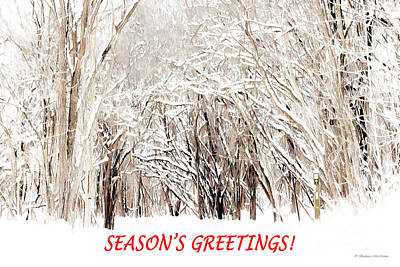 Photograph - Winter Season Greeting Card by Barbara McMahon