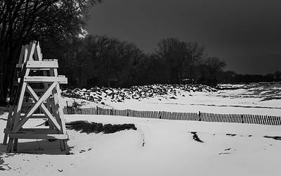 Photograph - Winter Sentinels By Kathleen Scanlan by Kathleen Scanlan