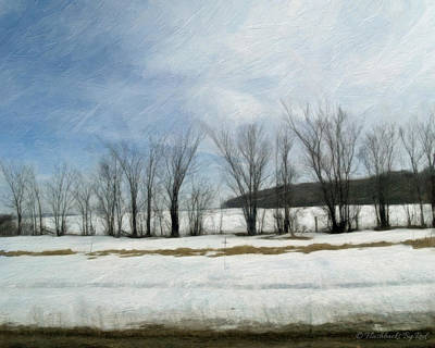 Painting - Winter Sentinels by Melody McBride