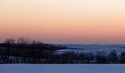 Photograph - Winter Shades by Wild Thing