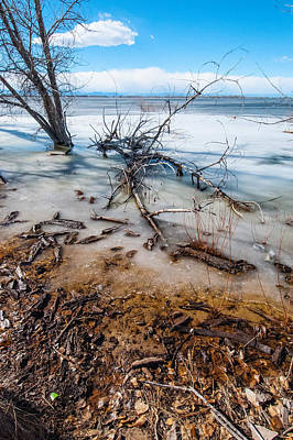 Winter Shore At Barr Lake_2 Art Print