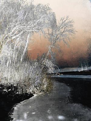Photograph - Winter Shroud by Shawna Rowe