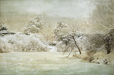 Photograph - Winter Silence by Julie Palencia
