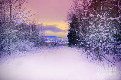 Okanagan Lake Photograph - Winter Skies by Tara Turner