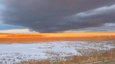 Winter Sky Alberta  Art Print by Susan Copley