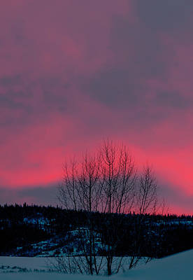 Photograph - winter sky in Colorado by Al Reiner