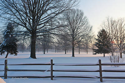Photograph - Winter Snow And Shadows by Ann Murphy