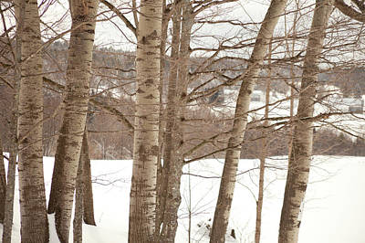 Vermont Photograph - Winter Snow, Rochester, Vermont by Brian Yarvin
