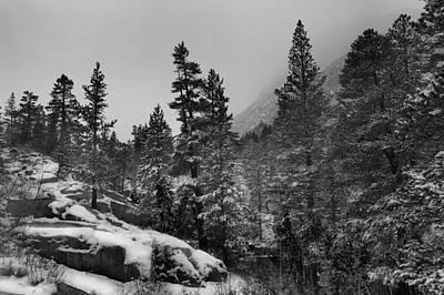 Photograph - Winter Snow Scene  C6j9087 by David Orias