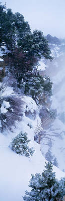 Thawing Photograph - Winter Snow Storm Grand Canyon Rim by Panoramic Images