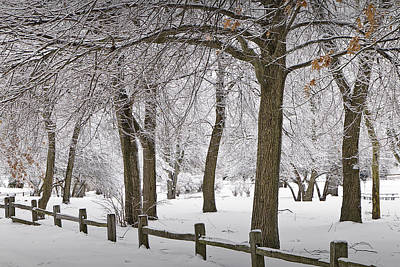 Photograph - Winter Snowfall At Garfield Park With Wooden Rail Fence No. 1038 by Randall Nyhof