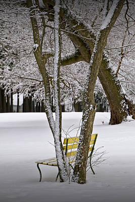 Blue Hues - Winter Snowfall at Garfield Park with Yellow Park Bench No. 0963 by Randall Nyhof